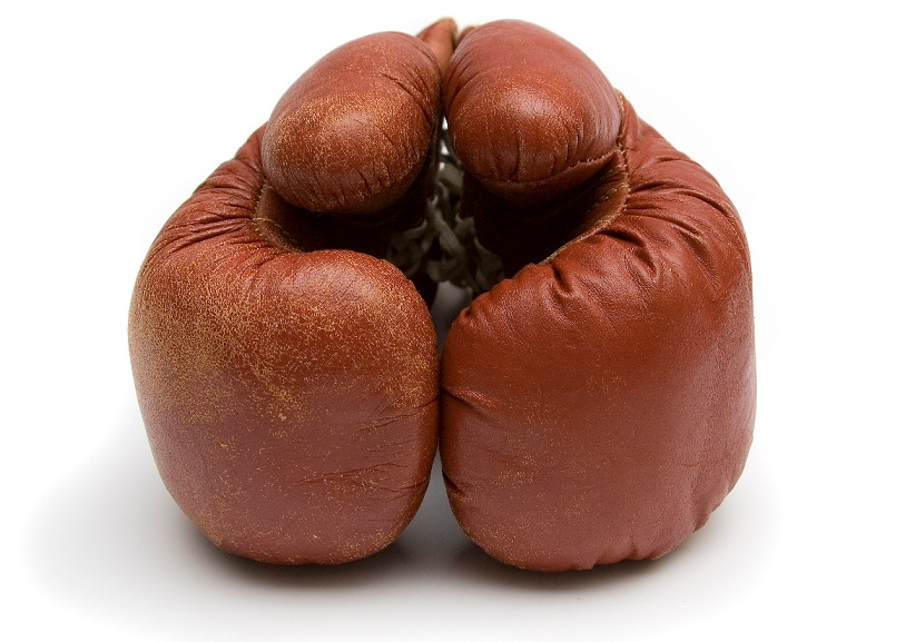 boxinggloves242