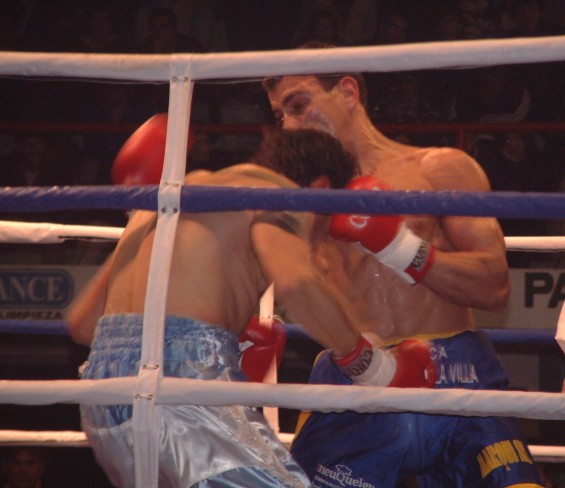 Fighters Boxing