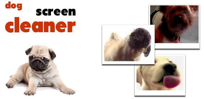 dog cleaner