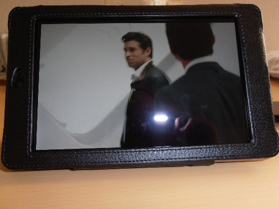 Nexus 7 Case 2