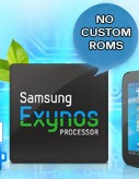 exynos feature