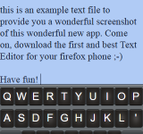 Its not just a text editor, its a Firefox OS text editor