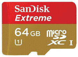 wpid sandisk memory card.jpg