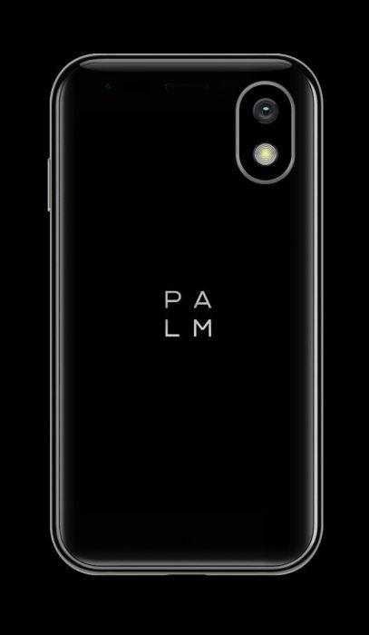 palm1a
