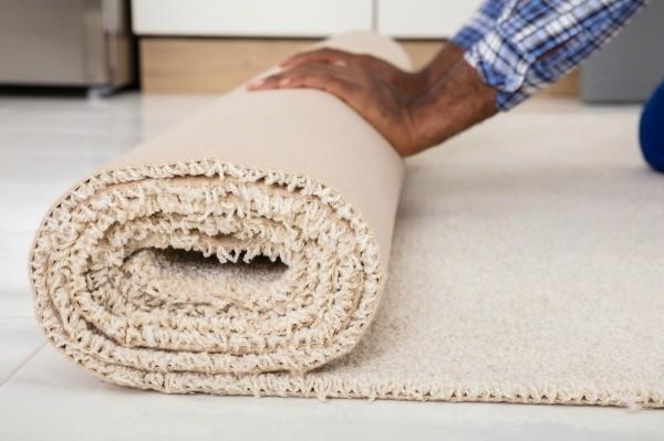 roll carpet1