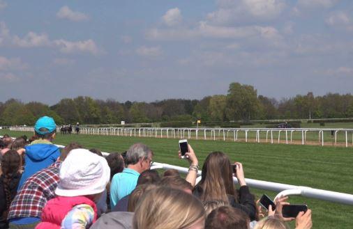 horse phone1