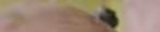 Screenshot 2020 02 02 at 23.30.13