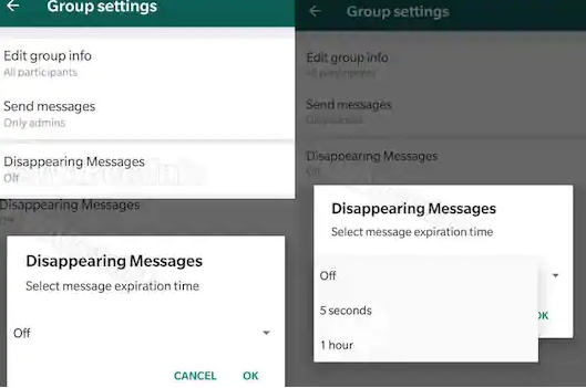 WhatsApp to get vanishing messages and Twitter — Tweets